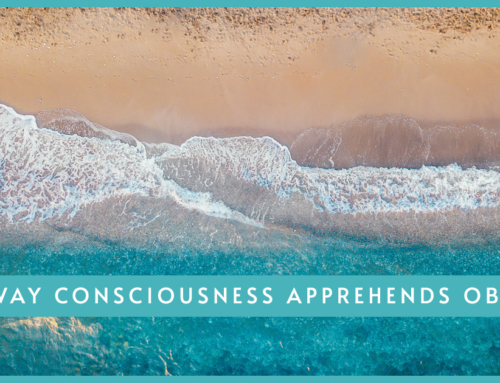 The Way Consciousness Apprehends Objects